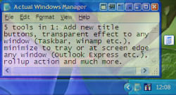 Actual Window Manager 7.2