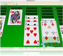 Big Solitaires 3D (Linux) 1.4