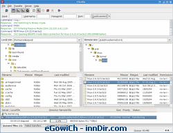 FileZilla (Linux) 3.1.1 RC1
