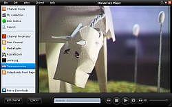 Get Miro (Mac OS) 2.5.4