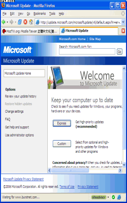 IE Tab Plus (FF 3.6+) 1.91.20100528