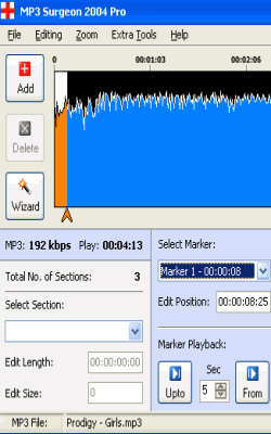 MP3 Surgeon 2004 Lite