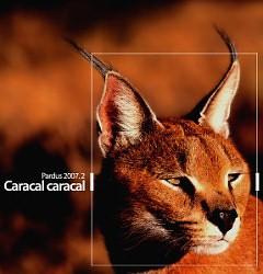 Pardus Kurulan CD 2008.1