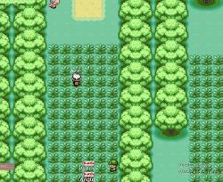 Pokemon World Online 1.79B