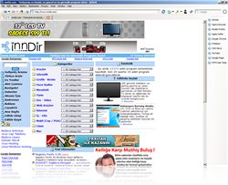 QtWeb Internet Browser Portable 3.8.4