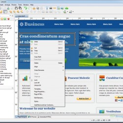 Website Realizer 1.7.13
