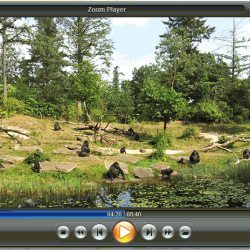 Zoom Player  Pro 9.0